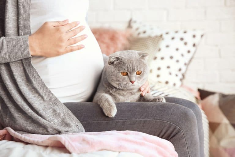 Is It Safe to Clean a Litter Box While Pregnant?