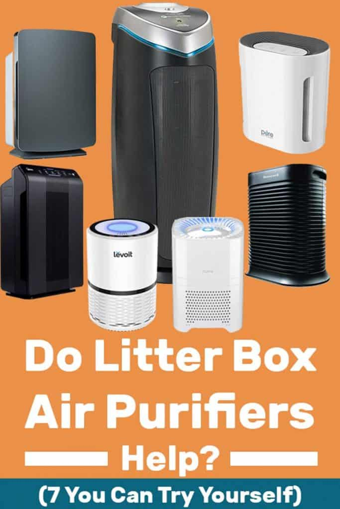 Do Litter Box Air Purifiers Help? (Plus 7 You Can Try for Yourself!)